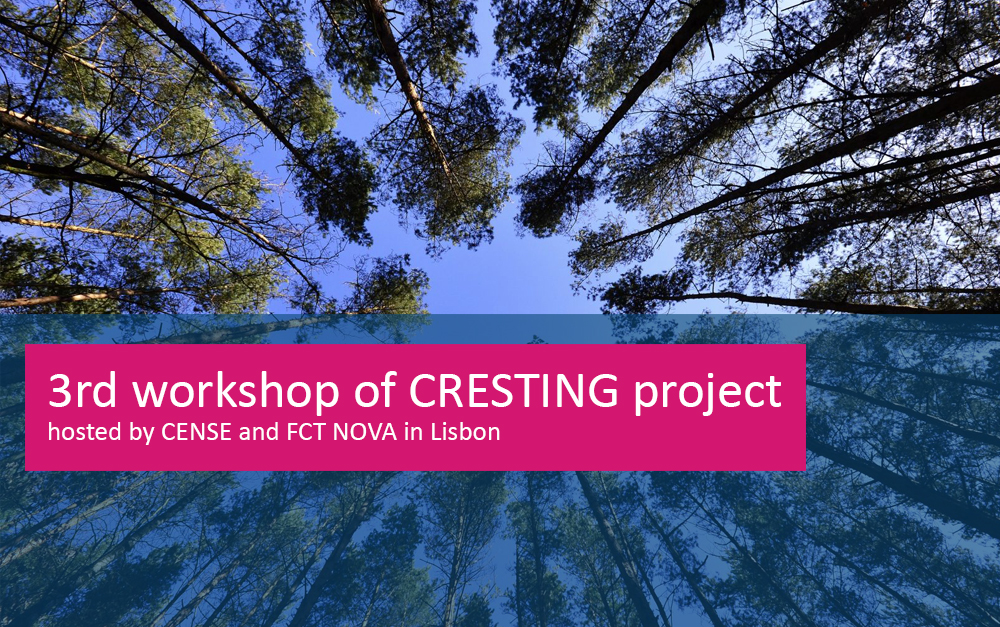 3rd workshop of CRESTING project